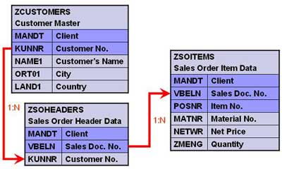 SAP Custom or Z-Table Cardinality